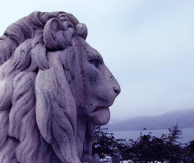 Moody Blue Lion small