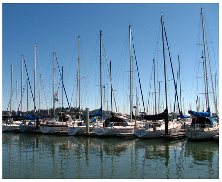 Boat_lineup