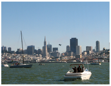 Sf_skyline_buzz_2