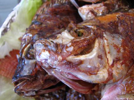 Fishies_4